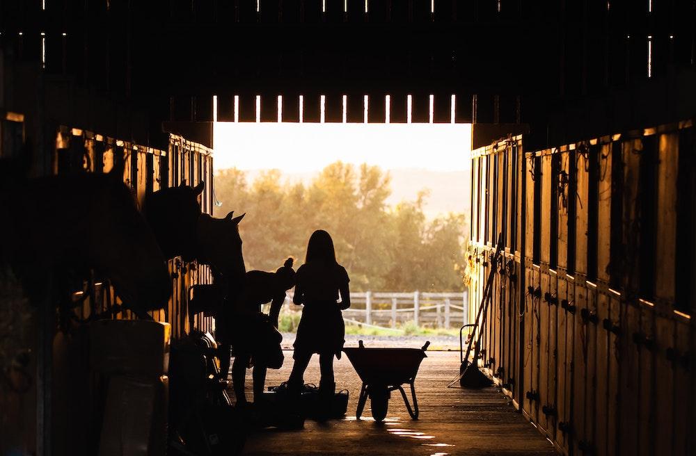 Ranchette Horse Properties